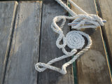 Dock Line Coiled on Pier Tied to Cleat, Ambergris Caye, Belize Photographic Print by James Forte