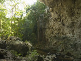Inside Looking Out of the 65 Foot High Rio Frio Cave Entrance, Belize Photographic Print by James Forte
