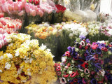 Fresh Flowers Outside a Market in Ferrara, Italy Photographic Print by Gina Martin