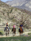 Family Riding their Horses on the Anza Trail Fotografie-Druck von Rich Reid