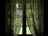 Looking Out the Window of a Log Cabin Through Lace Curtains Photographic Print by Todd Gipstein