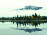 Mountain Reflected in a Boreal Pond, Alaska Photographic Print by Michael S. Quinton