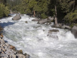 Maximum Flow of the South Fork Kings River, California Photographic Print by Rich Reid