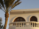 Dahab, Egypt, Middle East: Palm Tree near Balcony Photographie par Brimberg & Coulson