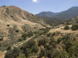 Pleito Canyon in the Wind Wolves Preserve, California Photographic Print by Rich Reid