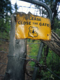Old Live Stock Gate on the Bear Creek Trail, Colorado Photographic Print by Bill Hatcher