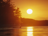 Distant Killer Whale is Seen in the Light of a Setting Sun Photographic Print by Bill Curtsinger