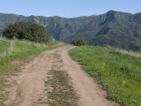 Dirt Road Leading to the Santa Ynez Mountains, California Photographic Print by Rich Reid