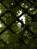 Italian Villa is Seen in the Distance Through an Iron Gate, Asolo, Italy Photographic Print by Todd Gipstein