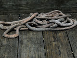 Nautical Ropes on a Dock Photographic Print by Todd Gipstein