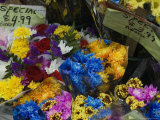Flowers for Sale at an Outdoor Market Stand, New York Photographic Print by Todd Gipstein