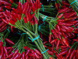 Red Chile Peppers in Bunches at the Rialto Market in Venice, Italy Photographic Print by Todd Gipstein