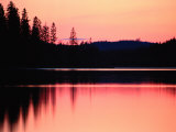 Dramatic Picture of a Forest-Edged Lake under a Pinkish-Orange Sky Photographie par Mattias Klum