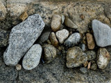 Rocks on a Sea Wall, Groton, Connecticut Photographic Print by Todd Gipstein