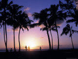 Palm Trees and People in Silhouette During Sunset on Oahu, Hawaii Photographic Print by Richard Nowitz