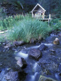 Sadie Cove Wilderness Lodge, with Flowing Creek and Sauna Cabin, Alaska Photographic Print by Rich Reid