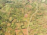 Masses of Humanity Along the Corridor Between Samburu and Mount Kenya Photographic Print by Michael Fay