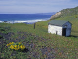 Old Powerhouse Cabin and Coastline near Point Conception, California Photographic Print by Rich Reid