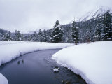Rock Creek and Fresh Snow in the Sierra Mountains, California Photographic Print by Rich Reid