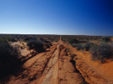 Rough Desert Sports Utility Vehicle Track Through Remote Sand Dunes, Australia Photographic Print by Jason Edwards