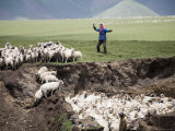Nomadic Shepherd with Her Flock of Sheep, Qinghai, China Photographic Print by David Evans