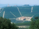 Popular Wine Region in the Piemonte, Italy Photographic Print by Michael S. Lewis
