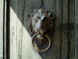 Lion's Face Door Knocker at the Arsenale in Venice, Italy Photographic Print by Todd Gipstein