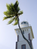 Lighthouse with Palm Tree, French Polynesia Photographic Print by Tim Laman