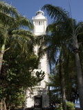 Lighthouse and Palm Trees on Point Venus, French Polynesia Photographic Print by Tim Laman