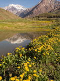 Lago Horcones with Cerro Aconcagua in the Background Photographic Print by Michael S. Lewis