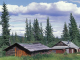 Old Log Cabin near Copper Center, Alaska Photographic Print by Rich Reid