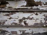 Paint Peeling Off the Boards of an Old Country House, Australia Photographic Print by Jason Edwards
