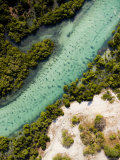 Mangrove and a Clear Estuarine River Close to the Indian Ocean, Mozambique Fotografisk tryk af Michael Fay