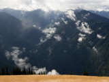 Olympic Mountains from Hurricane Ridge, Washington Photographic Print by Tim Laman