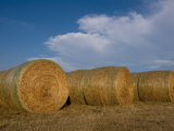 Straw Bales on a Hog Farm in Kansas Photographic Print by Joel Sartore