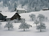 Switzerland, Winter Snow Scene in Alps near Appenzell Photographic Print by  Brimberg & Coulson