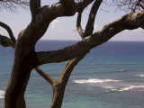 Overlooking the Pacific Ocean in Hawaii Photographic Print by Stacy Gold