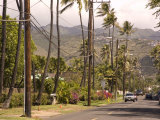 Residential Neighborhood in Honolulu, Hawaii Photographic Print by Stacy Gold