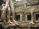 Temples of Angkor, Ta Prohm, Siem Reap, Cambodia, Overtaken by Trees Photographic Print by Richard Nowitz