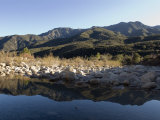 Reflection of the Santa Ynez Mountains in Matilija River, California Photographic Print by Rich Reid