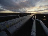 Pipes in the Prudhoe Bay Oil Field, Alaska Photographic Print by James P. Blair