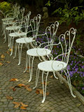 Patio Chairs in a Row on a Garden Path, Asolo, Italy Photographic Print by Todd Gipstein