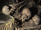 Skeletons of Escaping People Found in the Arcades of Old Harbour in Herculaneum, Italy Photographic Print by Richard Nowitz