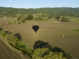 Napa Valley, USA: Hot Air Balloon Flying over Vineyards, California Photographic Print by  Brimberg & Coulson