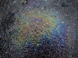 Oil Slick in a Gas Station Parking Lot near Knoxville, Tn Photographic Print by Joel Sartore