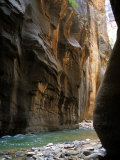 The Virgin River Flows Through Narrows Canyon in Zion National Park, Utah Photographic Print by Stacy Gold