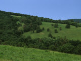 The Rolling Green Hills of Sky Meadows State Park Photographic Print by Stacy Gold