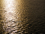The Sun Reflects Off Rippling Water, Alaska Photographic Print by Stacy Gold