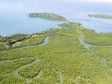Snaking Waterways and a Mangrove Estuary in Northwestern Madagascar, Photographic Print