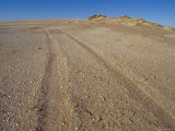 Vehicle Tracks Damage the Petrified Fossilised Plants on Dunes, Coorong National Park, Australia Photographic Print by Jason Edwards